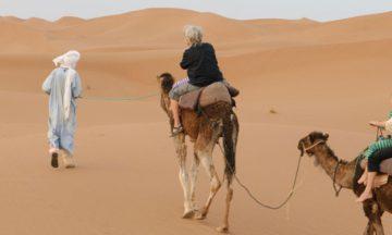 camel-trek-chegaga