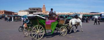 marrakech-koutchi