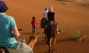 marrakech-zagora