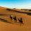 4 days Desert trek