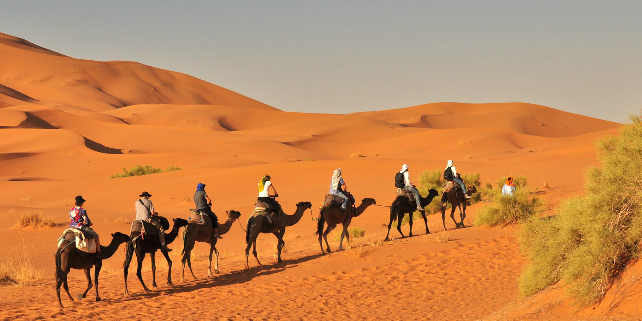 chegaga-camel-trek-1